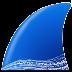 wireshark(网络协议分析